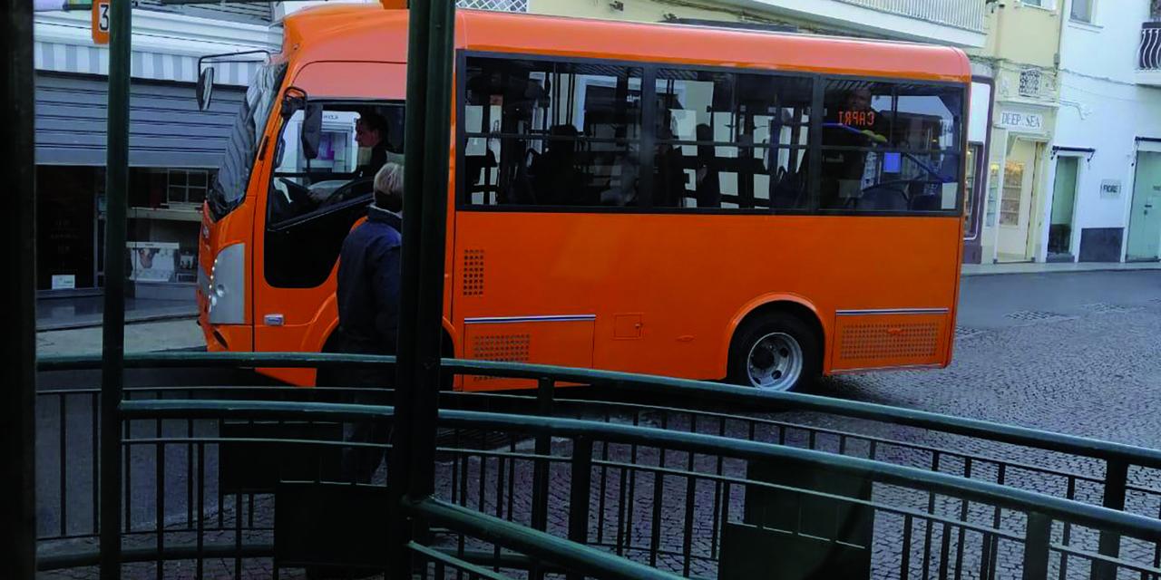 BUS: ARRIVA IL PRIMO GLI ALTRI A SEGUIRE